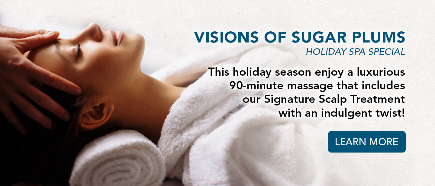 visions of sugar plums spa special. learn more